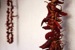 wiszący chili pieprze Fotografia Royalty Free