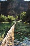 wiszący jezioro Obrazy Stock