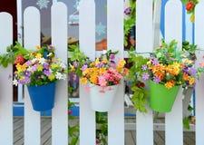 Wiszący kwiatów garnki zdjęcie stock