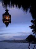 wiszący lampowi zwrotniki Fotografia Royalty Free