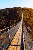 Wiszący linowy most Geierlay Obraz Royalty Free