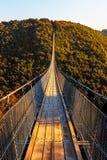 Wiszący linowy most Geierlay Zdjęcie Royalty Free