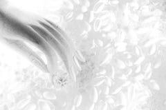 Wit artistiek beeld Royalty-vrije Stock Afbeelding