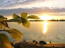 Świt blisko rzeki Obrazy Royalty Free