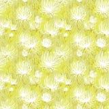 Wit bloemenpatroon Royalty-vrije Stock Fotografie