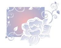Wit bloemenpatroon Stock Foto's