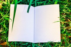Wit boek en blad Stock Foto
