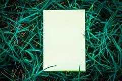 Wit boek met groen blad Stock Fotografie