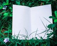Wit boek met groen blad Stock Afbeelding