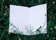 Wit boek met groen blad Stock Foto