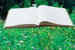 Wit boek met groen blad Stock Afbeeldingen