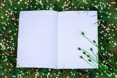 Wit boek met groen blad voor nota Stock Fotografie