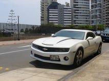 Wit Chevrolet Camaro SS met zwarte lijnen, Lima Stock Foto