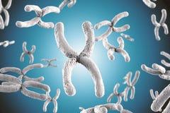 Wit chromosoom Stock Fotografie