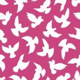 Wit duiven naadloos patroon op een violette achtergrond Stock Afbeeldingen