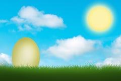 Wit ei in groen gras stock afbeeldingen