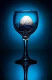Wit ei in wijnglas Royalty-vrije Stock Foto