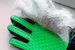 Wit en grijs haar van kat of hond op groene handschoen na het verzorgen, verwijdering van wol huisdier royalty-vrije stock afbeelding