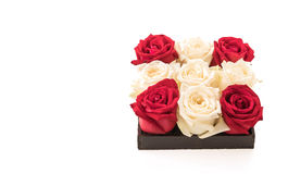 wit en rood nam op wit toe Royalty-vrije Stock Fotografie