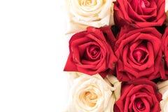 wit en rood nam op wit toe Stock Foto's