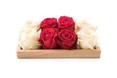 wit en rood nam op wit toe Royalty-vrije Stock Afbeelding