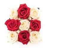 wit en rood nam op wit toe Stock Foto