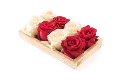 wit en rood nam op wit toe Royalty-vrije Stock Foto