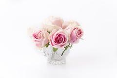 Wit en roze nam toe Royalty-vrije Stock Foto