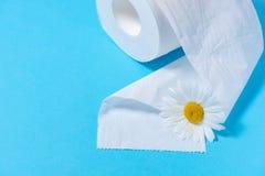 Wit geperforeerd toiletpapier met de geur en madeliefje op een blauwe achtergrond royalty-vrije stock fotografie