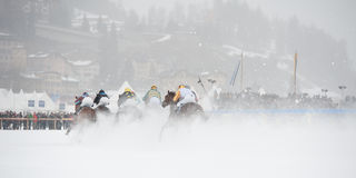 Wit Gras in St. Moritz, Zwitserland Stock Foto's