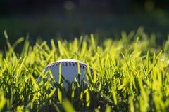 Wit honkbal in het gras op een warme, zonnige middag royalty-vrije stock afbeelding