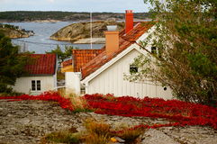Wit huis dichtbij fjord Kragero, Portor Stock Foto's