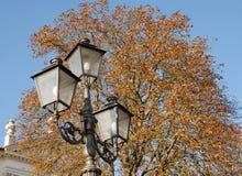 Wit huis met een boom met gekleurde die bladeren dichtbij Padua in Veneto wordt gevestigd (Italië) Stock Foto's