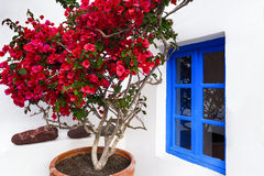 Wit huis, Santorini, Oia Royalty-vrije Stock Foto's