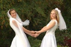 Wit huwelijksgeluk Stock Afbeelding