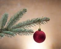 Wit Kerstmisthema met giften Stock Foto's