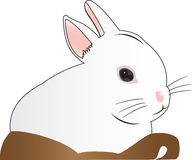 Wit konijn in mand Stock Illustratie