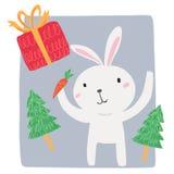Wit konijn met wortel en giftdoos Stock Afbeelding