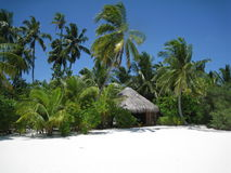 Wit maldivian strand stock afbeelding