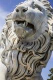 Wit marmeren leeuwbeeldhouwwerk Royalty-vrije Stock Foto's