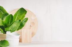 Wit modern keukendecor met beige natuurlijke houten schotel, werktuigen, groene installatie op houten achtergrond stock foto