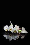Wit orchidee en kuuroord royalty-vrije stock afbeelding