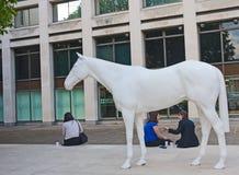 Wit paard buiten de Britse Raad Bureaus stock afbeelding