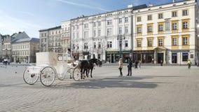 Wit paardvervoer op het Belangrijkste Marktvierkant stock videobeelden