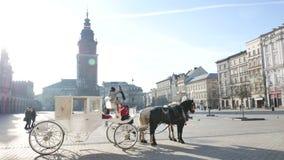 Wit paardvervoer op het Marktvierkant in Krakau stock videobeelden