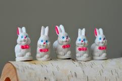Wit Pasen-konijntje Royalty-vrije Stock Foto's