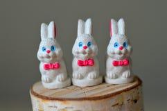 Wit Pasen-konijntje Stock Afbeeldingen