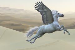 Wit Pegasus-Paard Royalty-vrije Stock Foto's