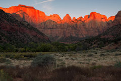 Świt przy Góruje dziewica, Zion park narodowy, Utah Obrazy Royalty Free