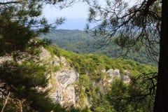Wit rotsen en van pijnboombomen landschap in de bergen van de Kaukasus stock foto's